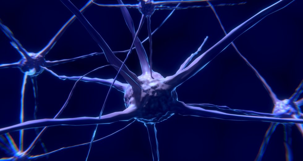 Research Suggests That There May Be a Link Between Long COVID in Children and Neuropsychiatric Issues