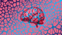 Improving Memory for People Suffering From Dementia Could Be Possible Using a Six-Minute Treatment