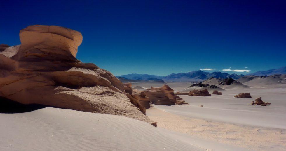 "Chilean Scientists Discover ""Dragon Fossil"""