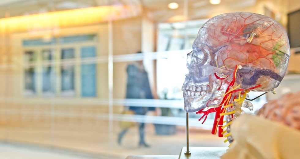 New Research Might Have Identified The Cause For Alzheimer's Disease