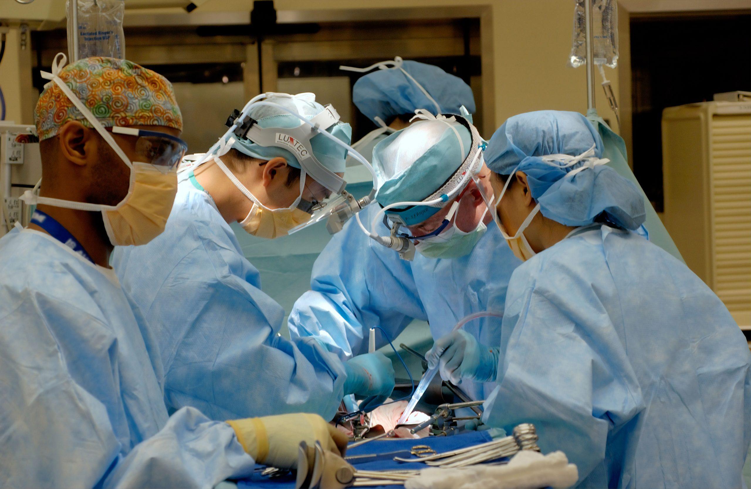 Human Receives Pig Kidney Transplant