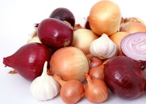 The CDC Raises Awareness for Salmonella Outbreak Occurring Due to Onions